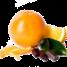 Апельсин-шоколад