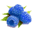 Голубая малина